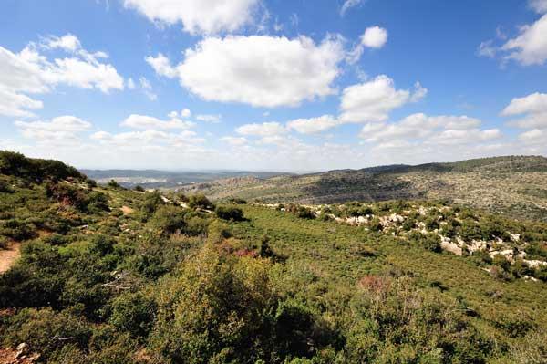 Israel-landscape